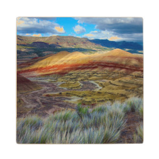 USA, Oregon. Landscape Of The Painted Hills Wooden Coaster
