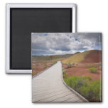 USA, Oregon, Mitchell, Pathway among Painted 2 Inch Square Magnet