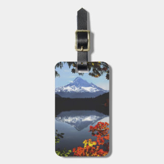 USA, Oregon, Mt. Hood National Forest. Bag Tag