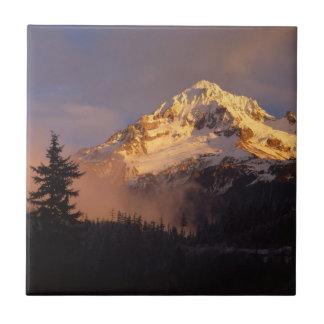 USA, Oregon, Mt. Hood National Forest Ceramic Tile