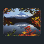 "USA, Oregon, Mt. Hood National Forest. Magnet<br><div class=""desc"">COPYRIGHT Steve Terrill / Jaynes Gallery / DanitaDelimont.com 