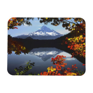 USA, Oregon, Mt. Hood National Forest. Magnet