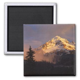 USA, Oregon, Mt. Hood National Forest. Rolling 2 Inch Square Magnet