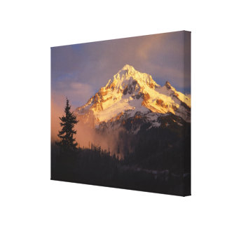 USA, Oregon, Mt. Hood National Forest. Rolling Canvas Print