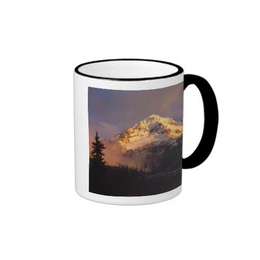 USA, Oregon, Mt. Hood National Forest. Rolling Ringer Coffee Mug