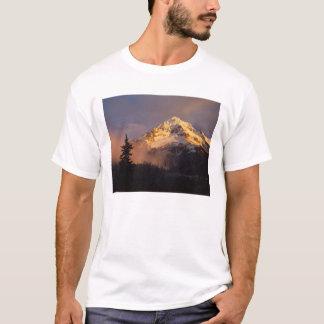 USA, Oregon, Mt. Hood National Forest. Rolling T-Shirt