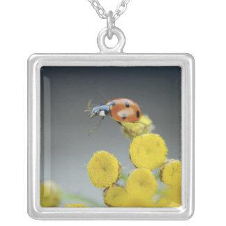USA, Oregon, Multnomah County. Ladybug on yellow Square Pendant Necklace