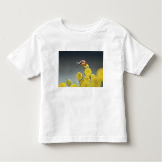 USA, Oregon, Multnomah County. Ladybug on yellow Toddler T-shirt