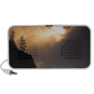 USA, Oregon, near Oswald West State Park, Late Travelling Speakers