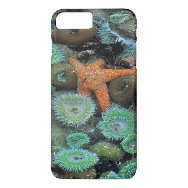 USA Themed USA, Oregon, Nepture SP. An orange starfish is iPhone 8 Plus/7 Plus Case