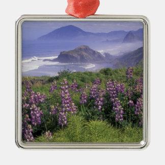 USA, Oregon, Nesika Beach. Lupine and Oregon Christmas Ornament