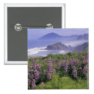 USA, Oregon, Nesika Beach. Lupine and Oregon Pinback Button