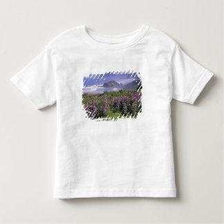 USA, Oregon, Nesika Beach. Lupine and Oregon T-shirt