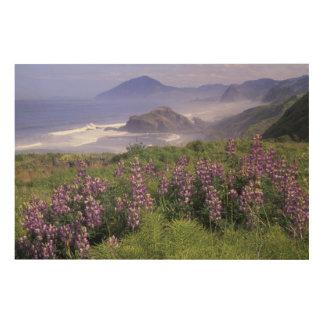 USA, Oregon, Nesika Beach. Lupine and Oregon Wood Wall Art