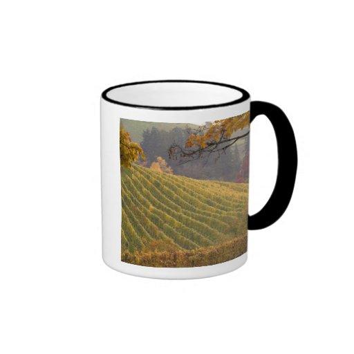 USA, Oregon, Newberg. Vineyard in the fall. Ringer Coffee Mug
