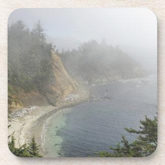 USA, Oregon, Ocean View, Cape Arago, Bandon Coaster