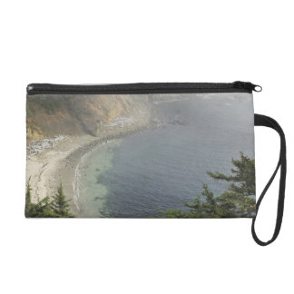 USA, Oregon, Ocean View, Cape Arago, Bandon Wristlet