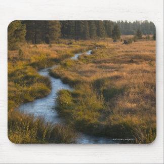 USA, Oregon, Paulina Creek Mouse Pads