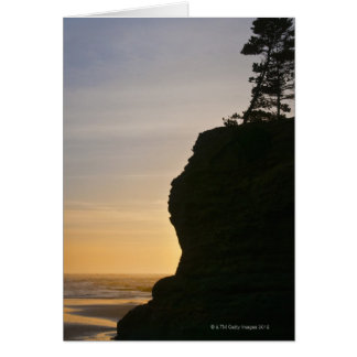 USA, Oregon, Pine tree on top of cliff at sunset Card