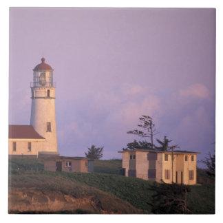 USA, Oregon, Port Orford Region, Cape Blanco Large Square Tile