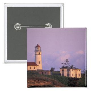 USA, Oregon, Port Orford Region, Cape Blanco Pinback Button