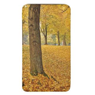 USA, Oregon, Portland. American Linden Trees Galaxy S5 Pouch