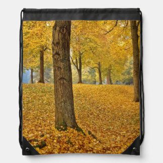 USA, Oregon, Portland. American Linden Trees Drawstring Bag