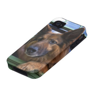 USA, Oregon, Portland. Griff the long-hair iPhone 4/4S Cases