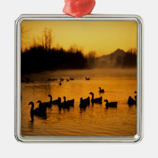 USA, Oregon, Portland. Waterfowl in Columbia Square Metal Christmas Ornament