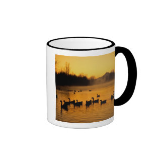 USA, Oregon, Portland. Waterfowl in Columbia Ringer Mug