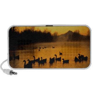 USA, Oregon, Portland. Waterfowl in Columbia iPod Speaker