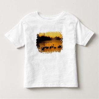 USA, Oregon, Portland. Waterfowl in Columbia T-shirt
