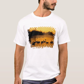 USA, Oregon, Portland. Waterfowl in Columbia T-Shirt