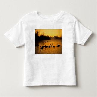 USA, Oregon, Portland. Waterfowl in Columbia Toddler T-shirt
