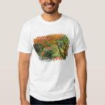 USA, Oregon, Portland. Wooden bridge and maple T Shirts