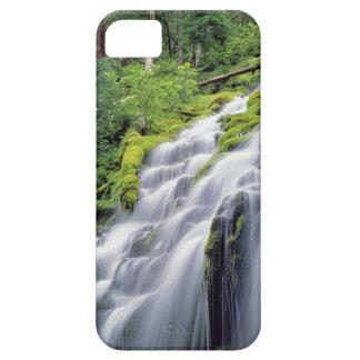 USA, Oregon, Proxy Falls. Proxy Falls rushes iPhone SE/5/5s Case