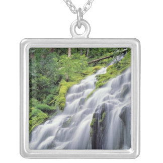 USA, Oregon, Proxy Falls. Proxy Falls rushes Silver Plated Necklace