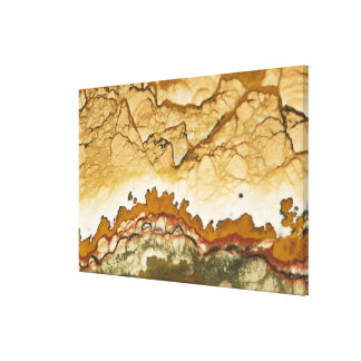 USA, Oregon, Rocky Butte. Close-up of picture Canvas Print