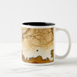 USA, Oregon, Rocky Butte. Close-up of picture Two-Tone Coffee Mug