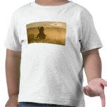 USA, Oregon, Seneca, Ponderosa Ranch. 2 T-shirts