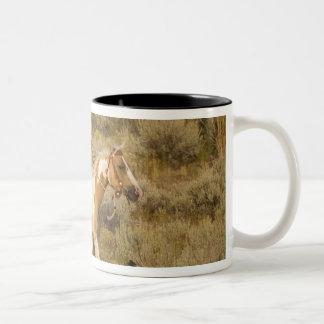 USA Oregon Seneca Ponderosa Ranch A cowboy Coffee Mugs
