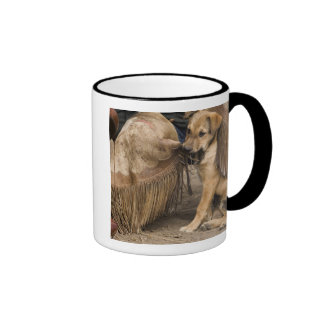 USA Oregon Seneca Ponderosa Ranch A puppy Coffee Mugs