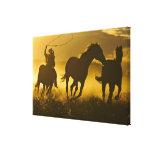 USA, Oregon, Seneca, Ponderosa Ranch. Gallery Wrapped Canvas