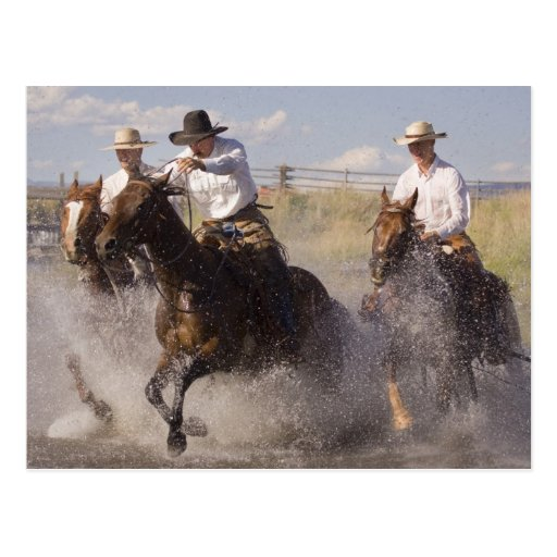 USA, Oregon, Seneca, Ponderosa Ranch. Cowboys Post Card