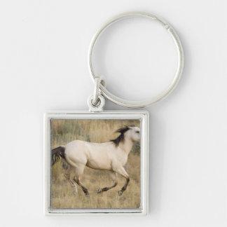 USA, Oregon, Seneca, Ponderosa Ranch. Horse Keychain