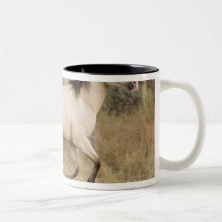 USA Oregon Seneca Ponderosa Ranch Horse Coffee Mug