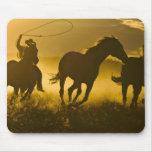 USA, Oregon, Seneca, Ponderosa Ranch. Mouse Pad