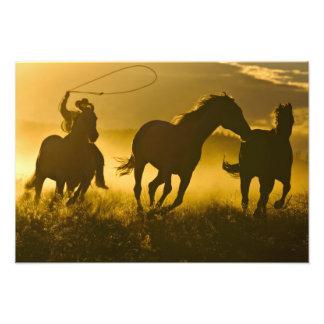 USA, Oregon, Seneca, Ponderosa Ranch. Photo Print