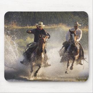 USA, Oregon, Seneca, Ponderosa Ranch. Two Mouse Pad