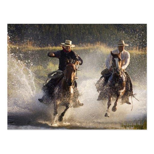 USA, Oregon, Seneca, Ponderosa Ranch. Two Post Card